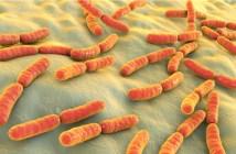 resistência-bacteriana-reduz-opcoes-de-tratamento-e-ameaca-a-saude-global