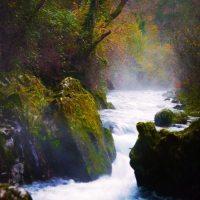 Nacimiento del río Purón… una senda de baja dificultad y mucha belleza
