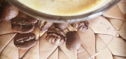 Café Gourmet e Orgânico