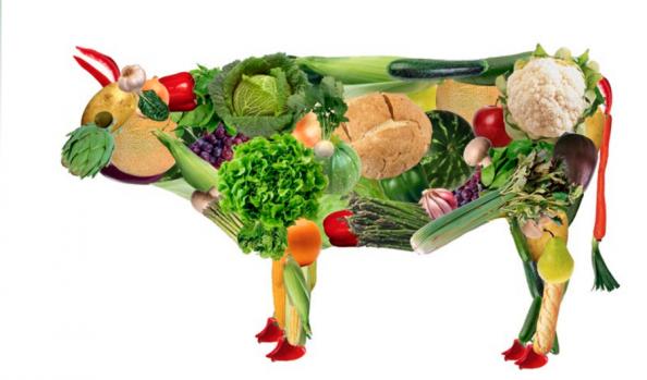 Alimentação vegana natural
