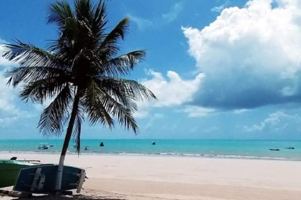 Melhores praias do Brasil: Maragogi - Praia de Maragogi - Alagoas