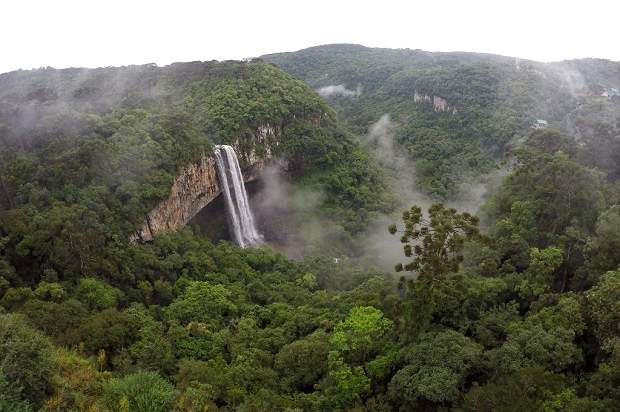Lugares frios no Brasil para visitar no inverno!