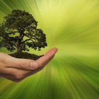 direito ambiental natureza