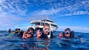 Bucea en la Barrera de Coral Australiana.