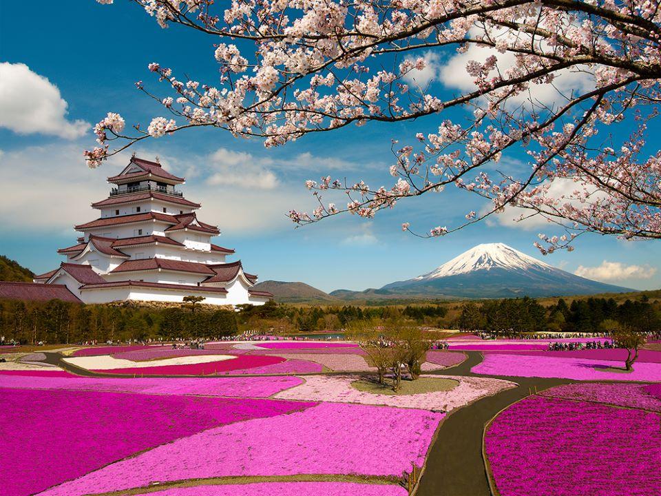 Japon desde España por 463 euros ida y vuelta