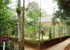 Museu de Biologia Professor Mello Leitão