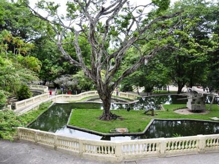 Parque Arruda Câmara