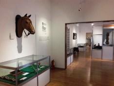 Museo Iberoamericano de Artesanías