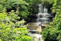 Cachoeira do Tingidor/ foto Juscel Reis