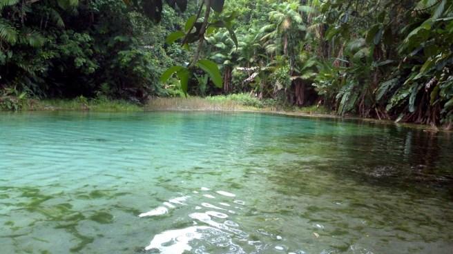 Igarapé Lagoa Azul