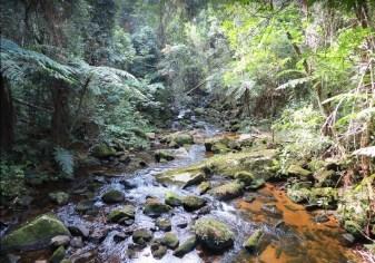 Ribeirão do Macapá