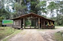 Parque Nacional da Serra da Bocaina/ foto Halley Pacheco de Oliveira