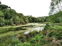 Parque Estadual Rio Canoas/ foto Thays Bragagnolo Casal