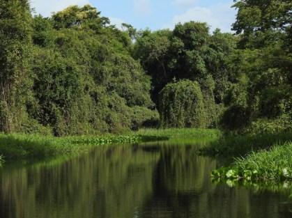 Parque Nacional Noel Kempff Mercado