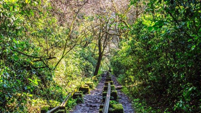 Sendero El Funicular