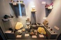 Museo de Historia Natural Alcide d'Orbigny