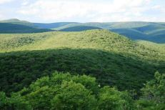 Parque Nacional Defensores del Chaco