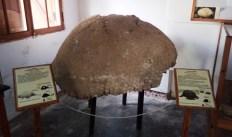 Museo Dalmacio Velez Sarfield