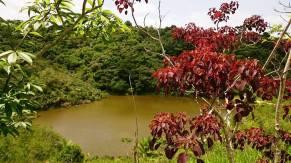 Reserva Particular de Proteção Natural Serra do Contente