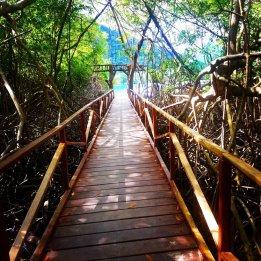 Playa Soledad/ foto Vane Tuay
