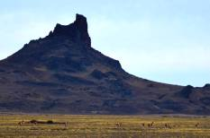 Cerro Ventana/ foto Atilio Ruben Calbucura