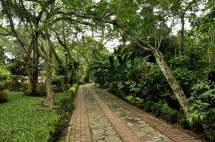 Jardín Botánico Eloy Valenzuela