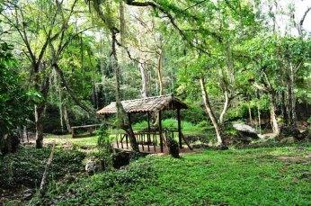 Parque Natural de La Chorrera