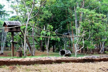 Parque Zoobotânico de Carajás