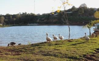 Lago Municipal Pedro de Freitas