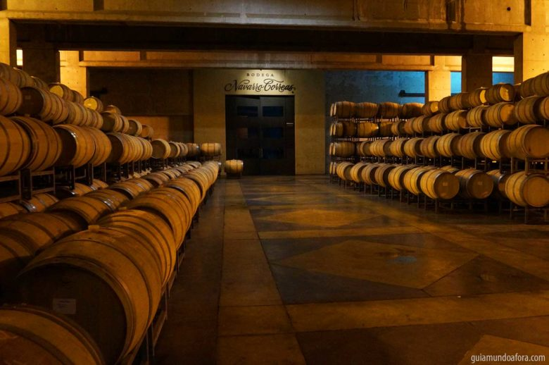Tour de vinhos em Mendoza