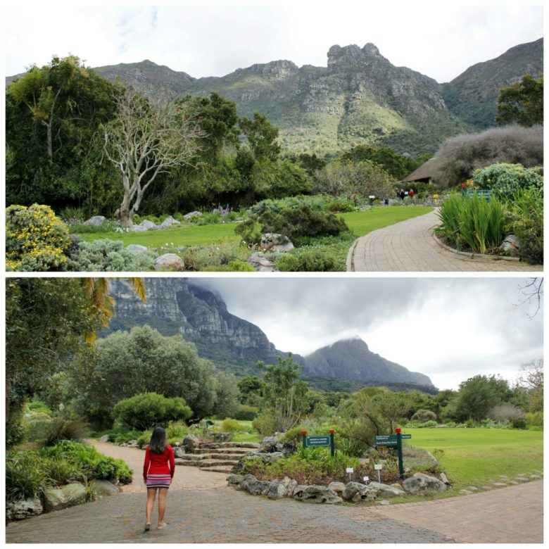 Jardim botânico de Cape Town