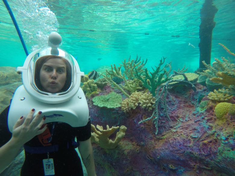 No SeaVenture, no Discovery Cove Orlando