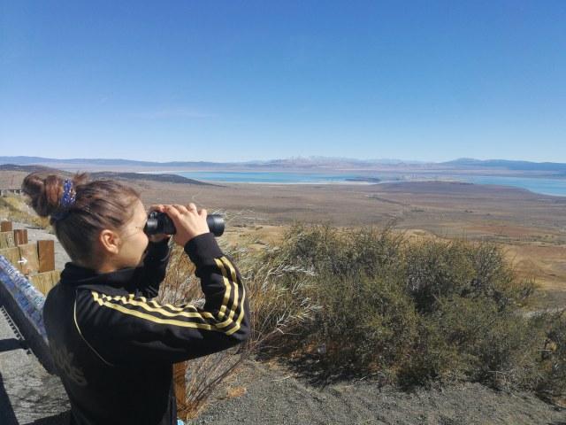 El mirador del lago Mono tiene, en sus guardarraíles, multitud de pegatinas de viajeros..