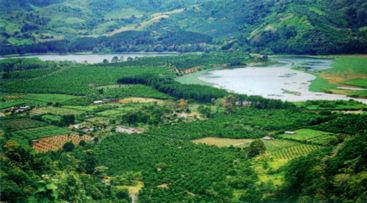 Bienes Raíces en Costa Rica