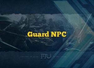 Guard NPC