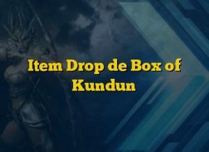 Item Drop de Box of Kundun