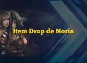 Item Drop de Noria