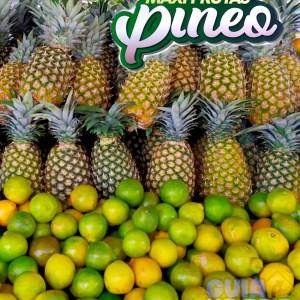 Piñas - Maxifrutas