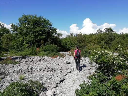 sabina-viezzoli-guida-naturalistica-trieste-passeggiate-in-carso-bora