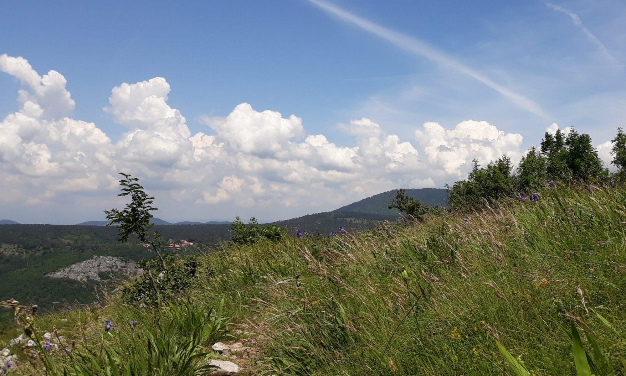 escursione monte carso sella della bora passeggiata val rosandra