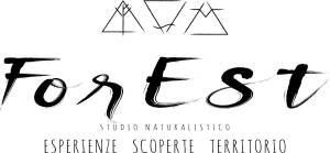 logo forest studio naturalistico