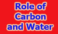 importance of carbon and water