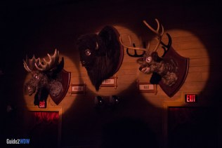 Country Bear Jamboree - Moose Deer Buffalo Heads - Magic Kingdom Attraction