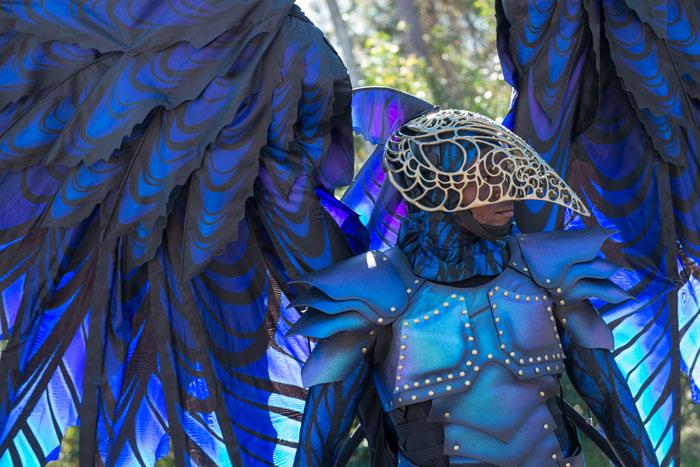 Festival of Fantasy - Costume