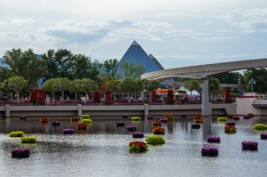 Water and Flowers - Epcot-Flower-and-Garden-Festival