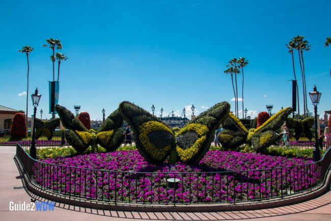 Butterflies - Topiaries at the Epcot Flower and Garden Festival