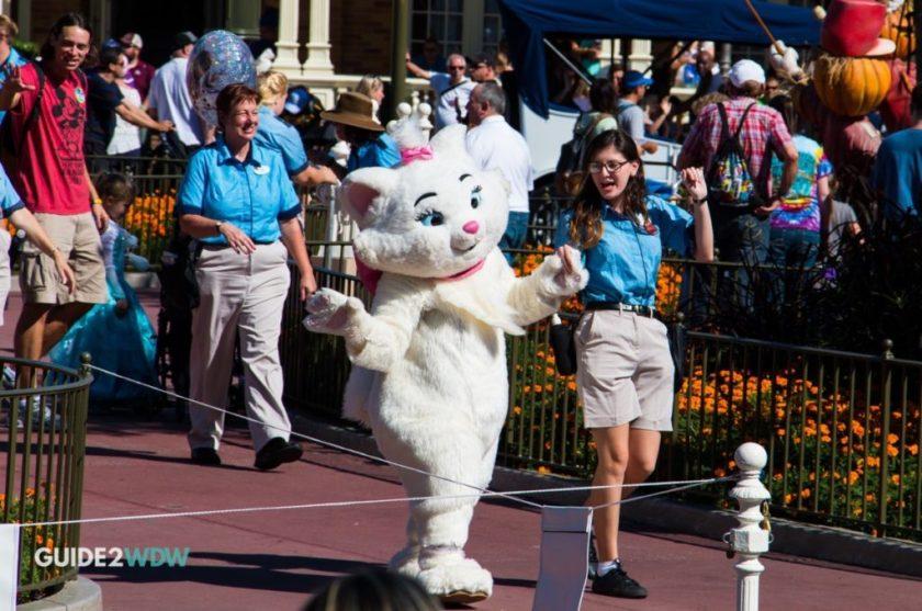 Main Street Meet and Greet - Magic Kingdom - Marie the Cat