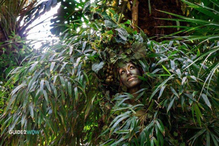 Miss Divine hidden in the trees at Animal Kingdom
