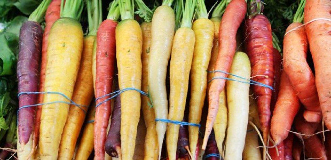zanahorias frescas del mercado de agricultores
