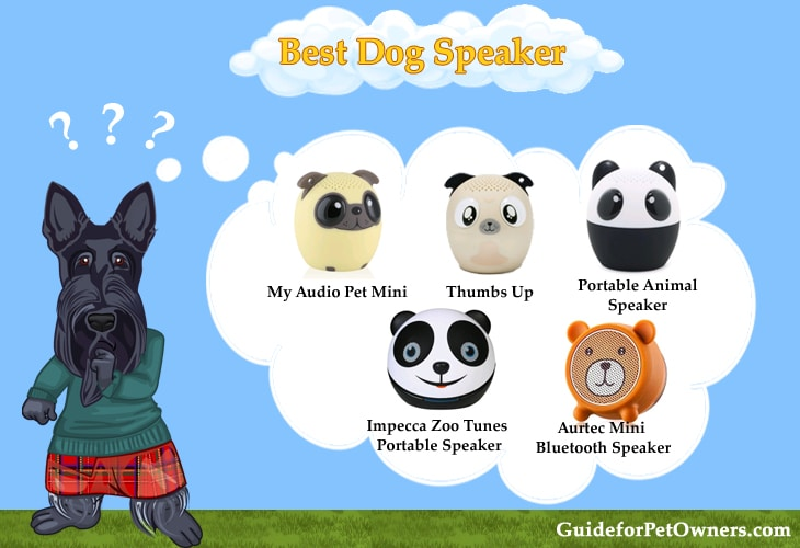 Best Dog Speaker